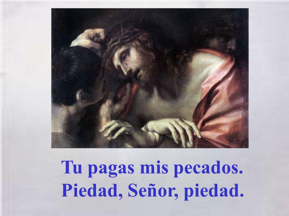 Tu pagas mis pecados. Piedad, Señor, piedad.
