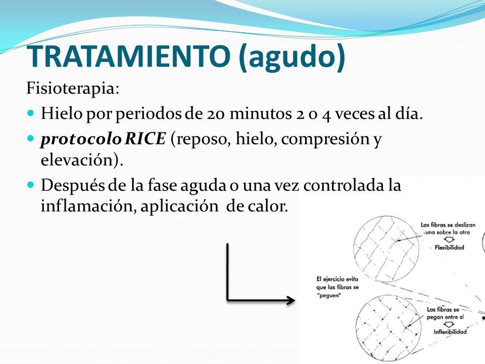 TRATAMIENTO (agudo) Fisioterapia: