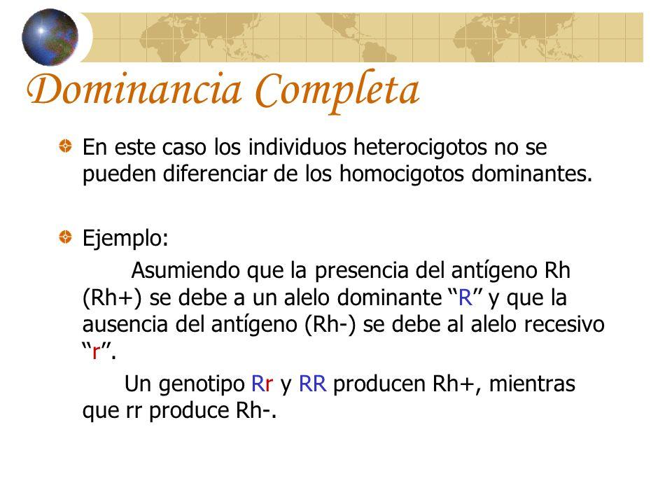 Dominancia Completa En este caso los individuos heterocigotos no se pueden diferenciar de los homocigotos dominantes.