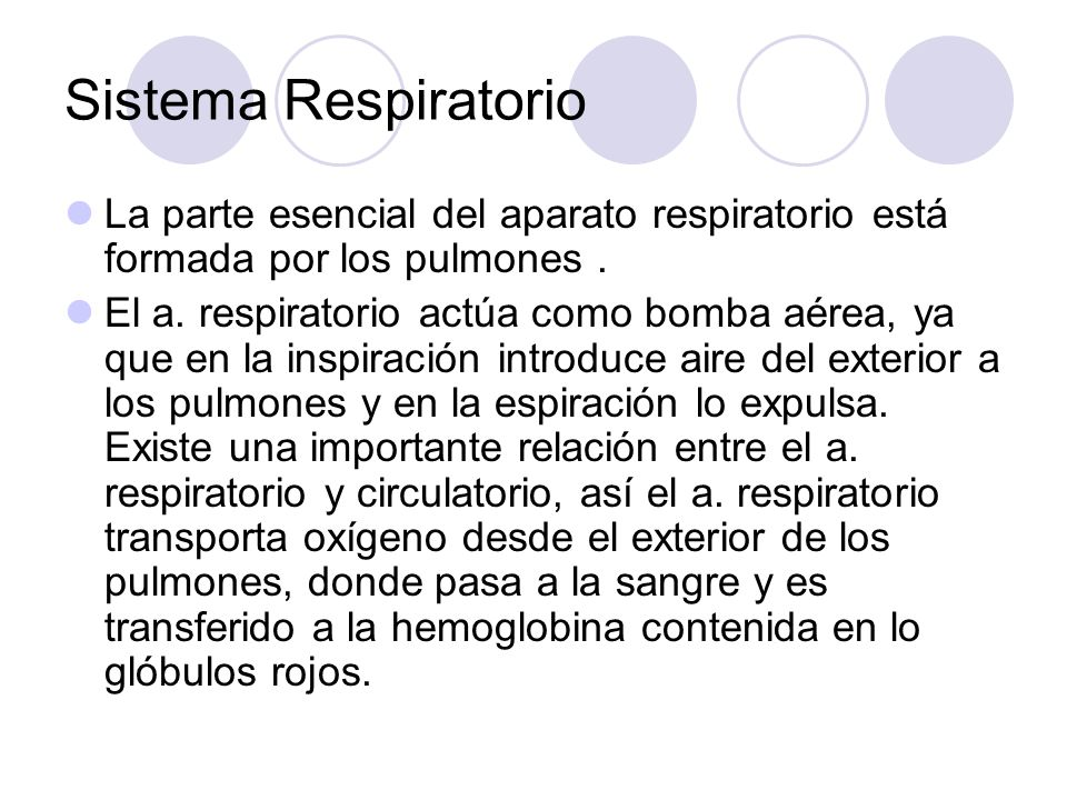 Sistema Respiratorio La parte esencial del aparato respiratorio está formada por los pulmones .