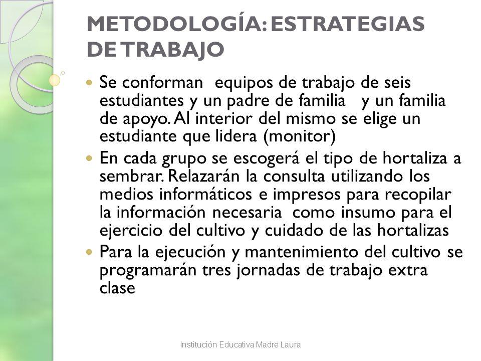 METODOLOGÍA: ESTRATEGIAS DE TRABAJO