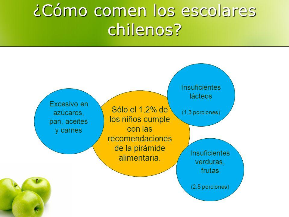 ¿Cómo comen los escolares chilenos