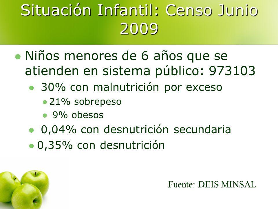 Situación Infantil: Censo Junio 2009
