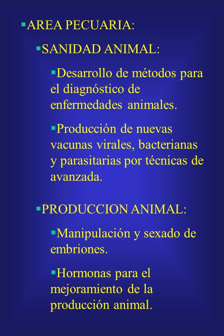 AREA PECUARIA: SANIDAD ANIMAL: Desarrollo de métodos para el diagnóstico de enfermedades animales.