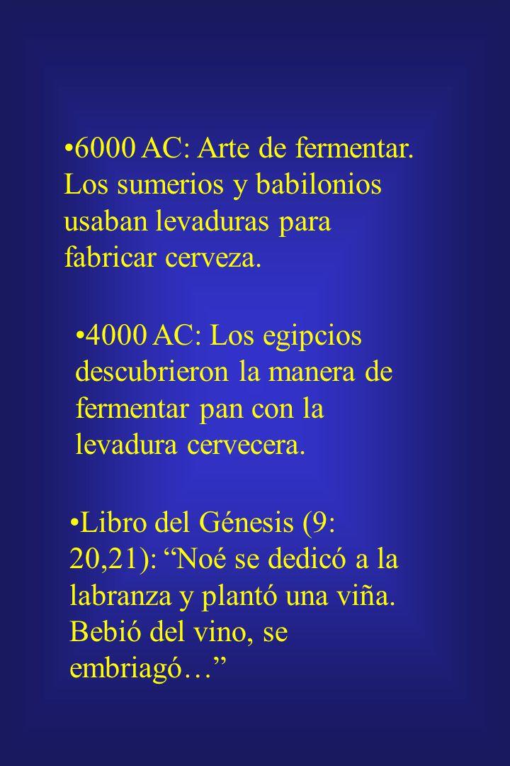 6000 AC: Arte de fermentar. Los sumerios y babilonios usaban levaduras para fabricar cerveza.