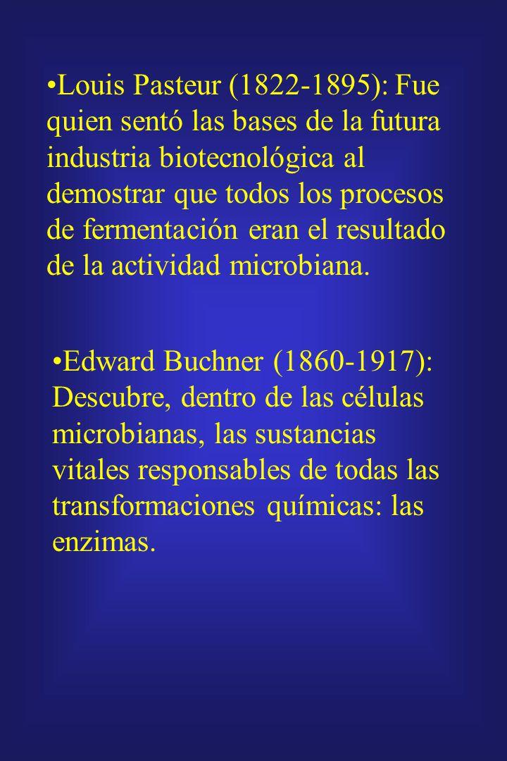 Louis Pasteur (1822-1895): Fue quien sentó las bases de la futura industria biotecnológica al demostrar que todos los procesos de fermentación eran el resultado de la actividad microbiana.