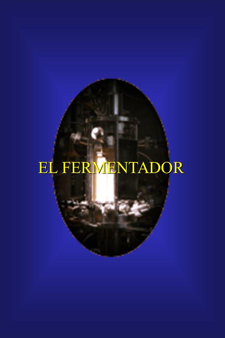 EL FERMENTADOR