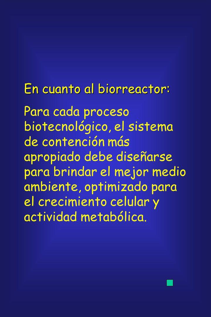 En cuanto al biorreactor: