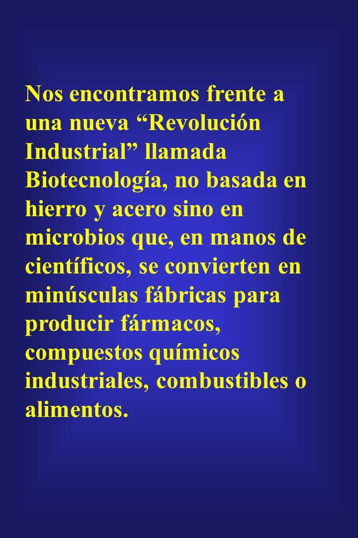 Nos encontramos frente a una nueva Revolución Industrial llamada Biotecnología, no basada en hierro y acero sino en microbios que, en manos de científicos, se convierten en minúsculas fábricas para producir fármacos, compuestos químicos industriales, combustibles o alimentos.