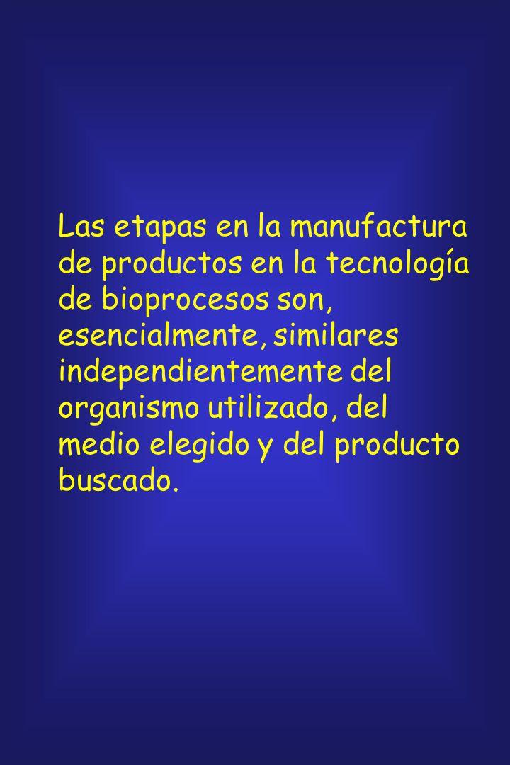 Las etapas en la manufactura de productos en la tecnología de bioprocesos son, esencialmente, similares independientemente del organismo utilizado, del medio elegido y del producto buscado.