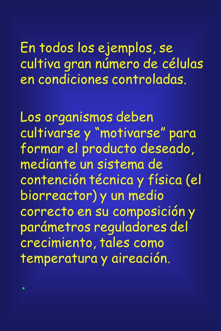En todos los ejemplos, se cultiva gran número de células en condiciones controladas.