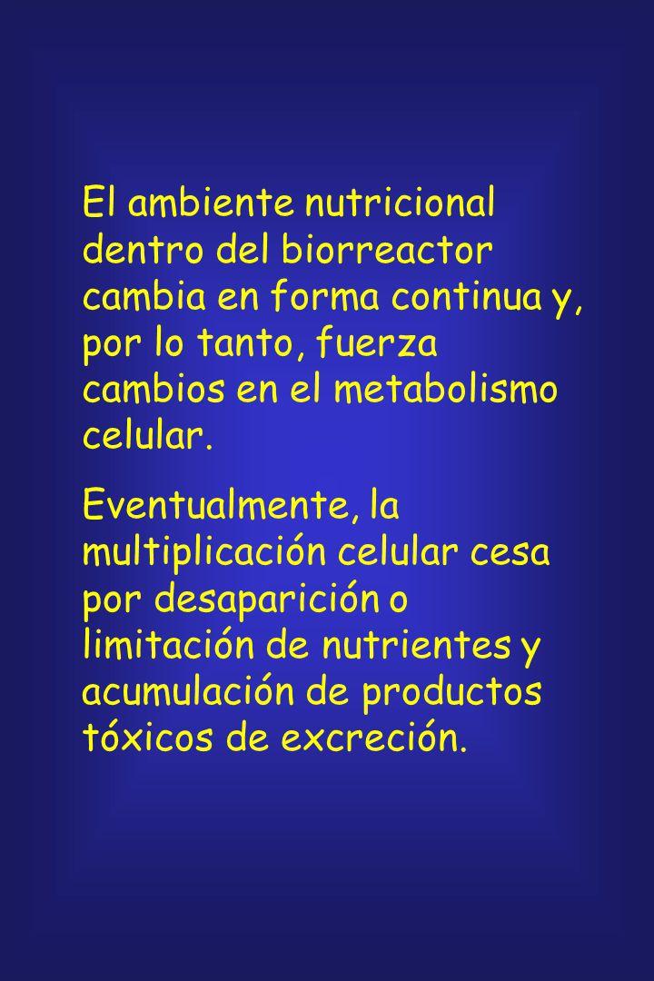 El ambiente nutricional dentro del biorreactor cambia en forma continua y, por lo tanto, fuerza cambios en el metabolismo celular.