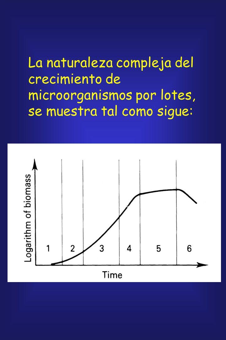La naturaleza compleja del crecimiento de microorganismos por lotes, se muestra tal como sigue: