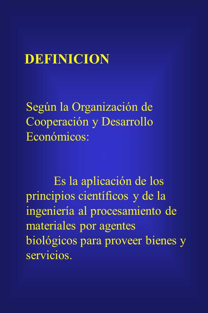 DEFINICION Según la Organización de Cooperación y Desarrollo Económicos: