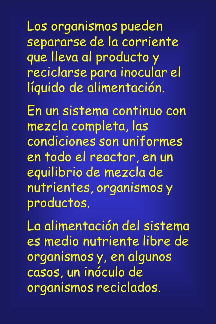 Los organismos pueden separarse de la corriente que lleva al producto y reciclarse para inocular el líquido de alimentación.