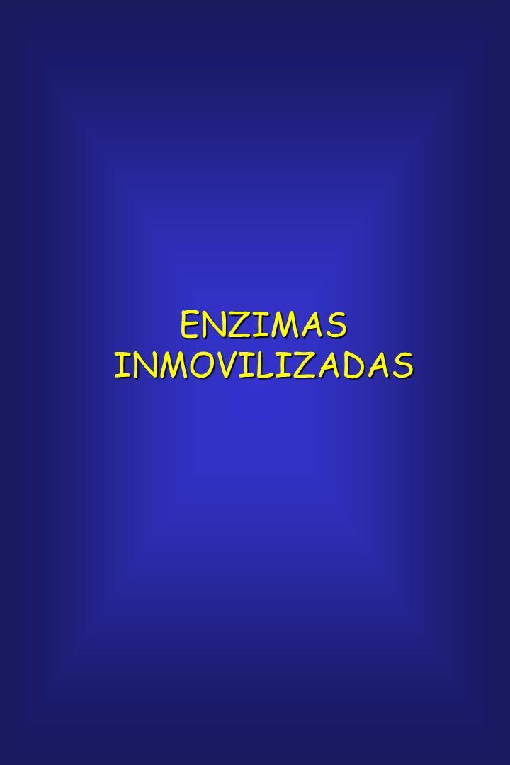 ENZIMAS INMOVILIZADAS
