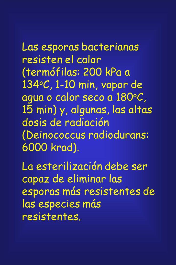 Las esporas bacterianas resisten el calor (termófilas: 200 kPa a 134oC, 1-10 min, vapor de agua o calor seco a 180oC, 15 min) y, algunas, las altas dosis de radiación (Deinococcus radiodurans: 6000 krad).