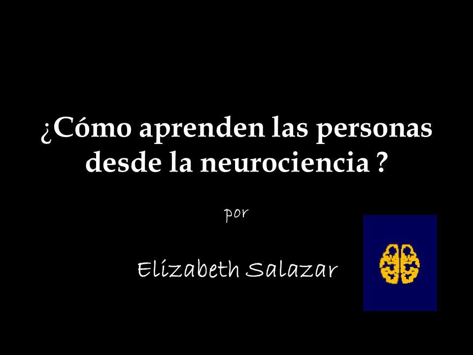 ¿Cómo aprenden las personas desde la neurociencia