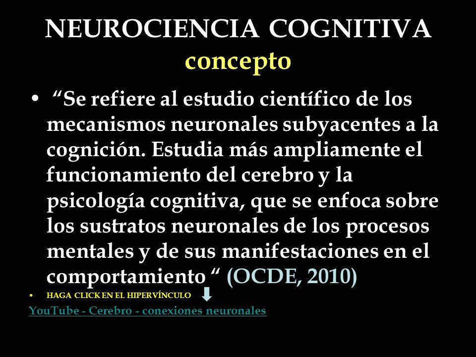 NEUROCIENCIA COGNITIVA concepto