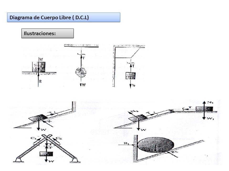 Diagrama de Cuerpo Libre ( D.C.L)