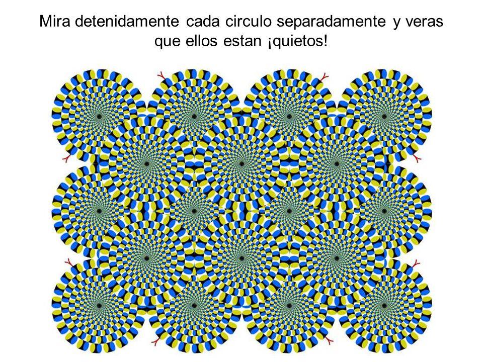 Mira detenidamente cada circulo separadamente y veras que ellos estan ¡quietos!