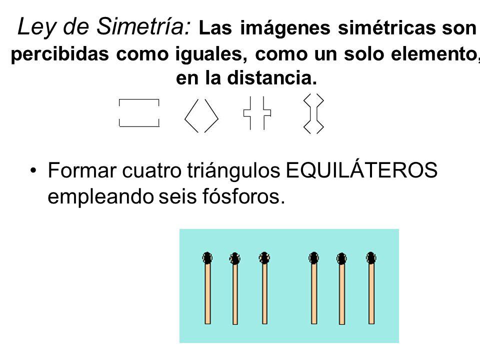 Ley de Simetría: Las imágenes simétricas son percibidas como iguales, como un solo elemento, en la distancia.