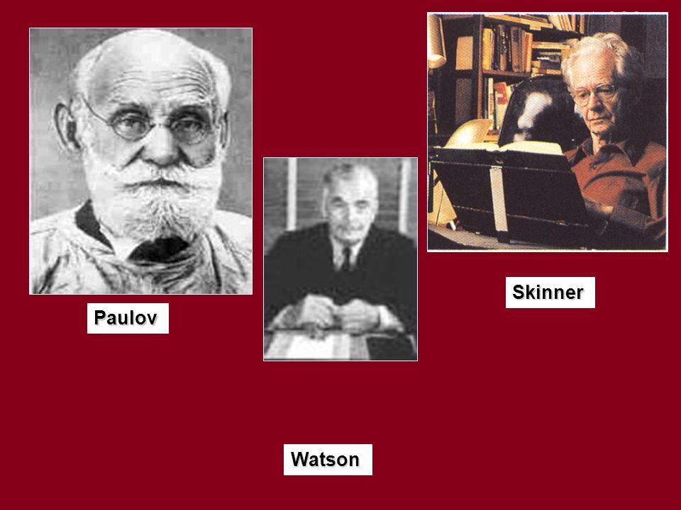 Paulov Watson Skinner