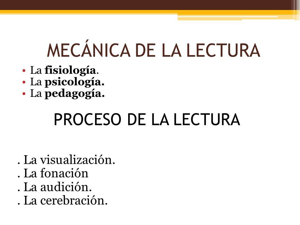 MECÁNICA DE LA LECTURA PROCESO DE LA LECTURA . La visualización.