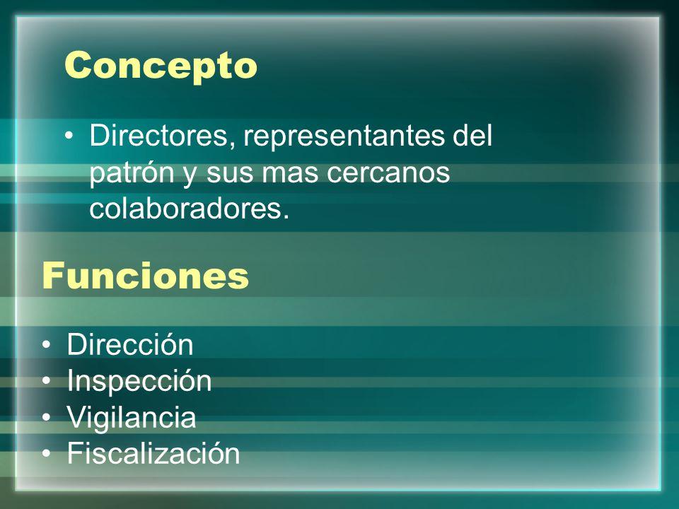 Concepto Directores, representantes del patrón y sus mas cercanos colaboradores. Funciones. Dirección.