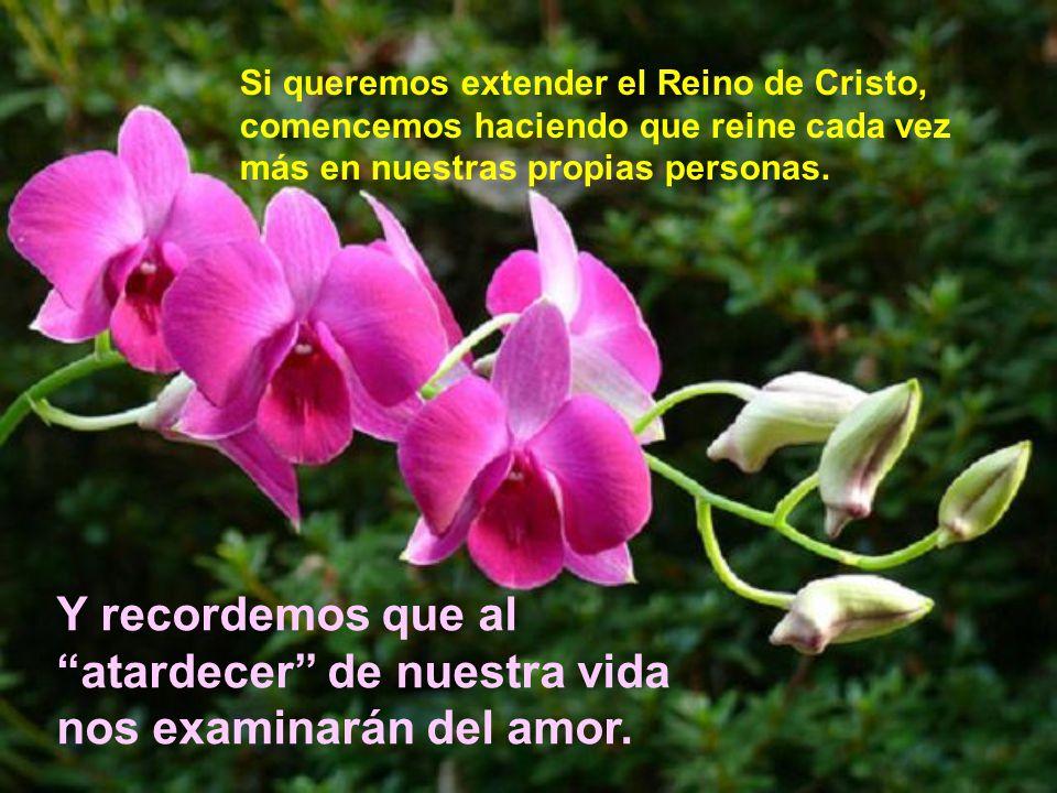 Si queremos extender el Reino de Cristo, comencemos haciendo que reine cada vez más en nuestras propias personas.