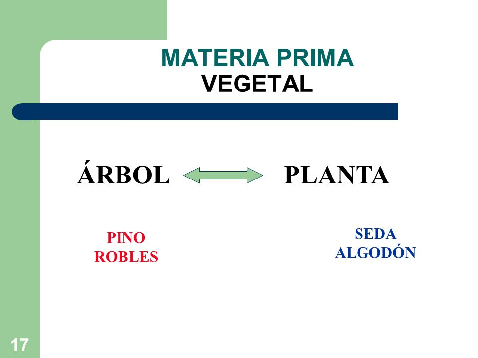MATERIA PRIMA VEGETAL ÁRBOL PLANTA SEDA ALGODÓN PINO ROBLES