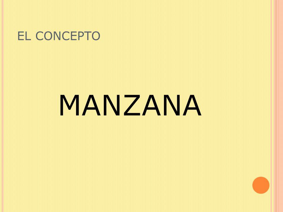 EL CONCEPTO MANZANA