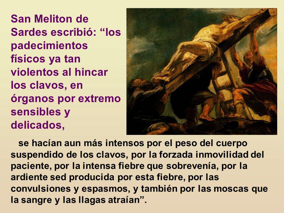 San Meliton de Sardes escribió: los padecimientos físicos ya tan violentos al hincar los clavos, en órganos por extremo sensibles y delicados,