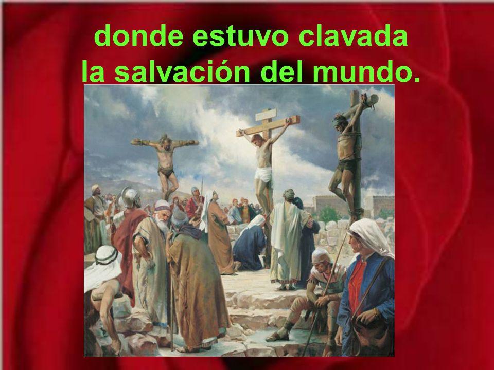 donde estuvo clavada la salvación del mundo.