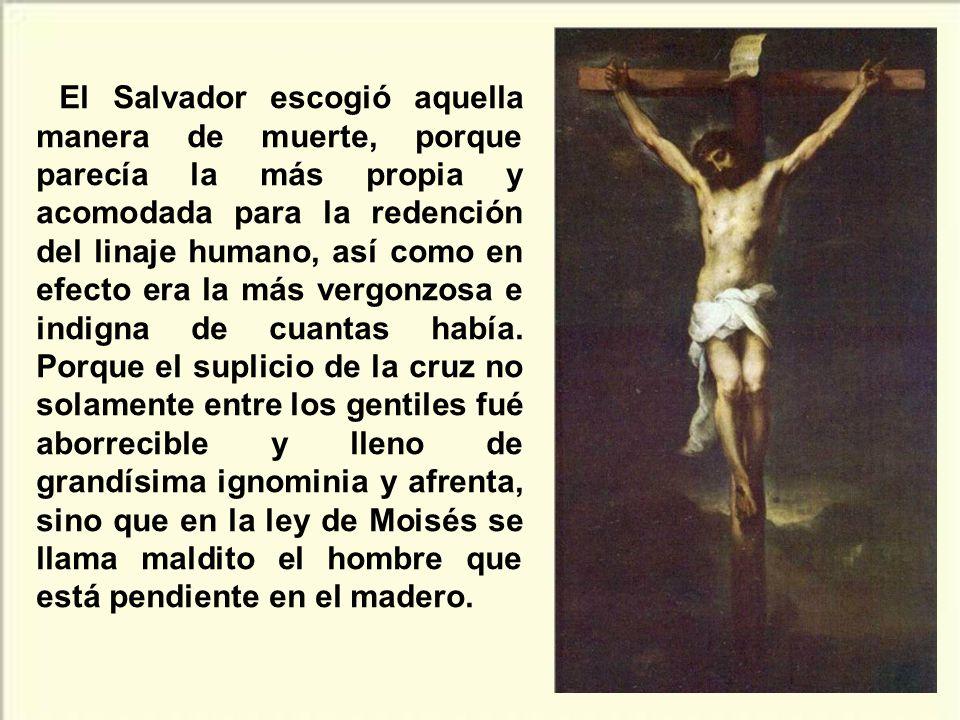 El Salvador escogió aquella manera de muerte, porque parecía la más propia y acomodada para la redención del linaje humano, así como en efecto era la más vergonzosa e indigna de cuantas había.