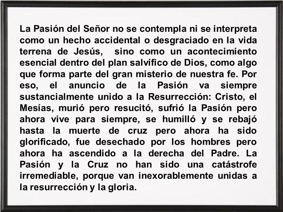 La Pasión del Señor no se contempla ni se interpreta como un hecho accidental o desgraciado en la vida terrena de Jesús, sino como un acontecimiento esencial dentro del plan salvífico de Dios, como algo que forma parte del gran misterio de nuestra fe.