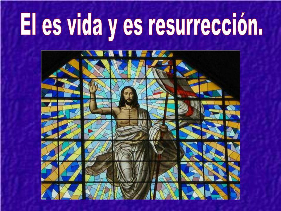 El es vida y es resurrección.