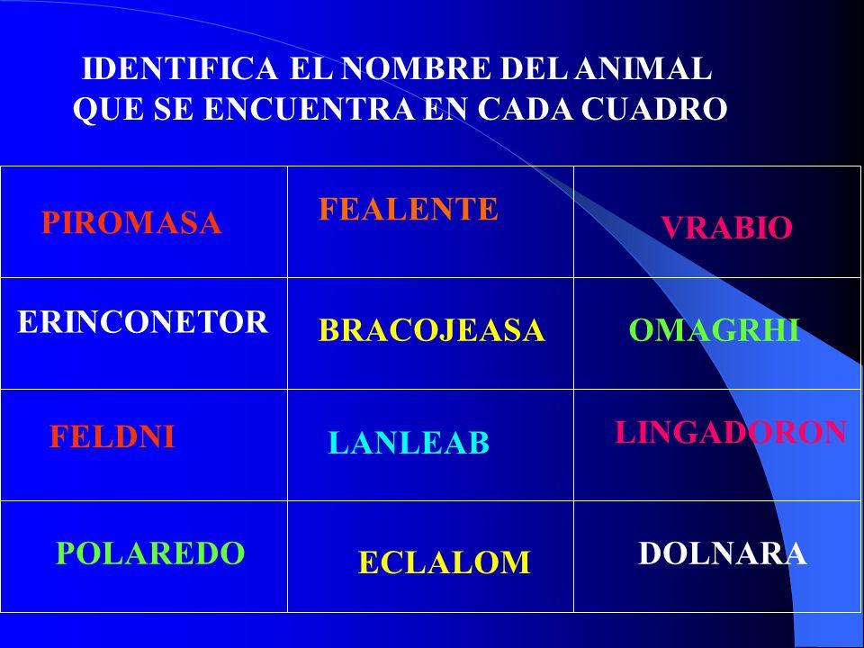 IDENTIFICA EL NOMBRE DEL ANIMAL QUE SE ENCUENTRA EN CADA CUADRO