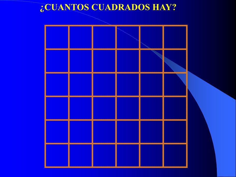 ¿CUANTOS CUADRADOS HAY