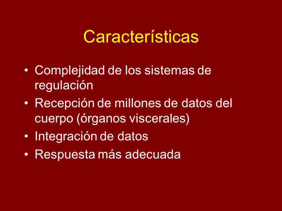 Características Complejidad de los sistemas de regulación