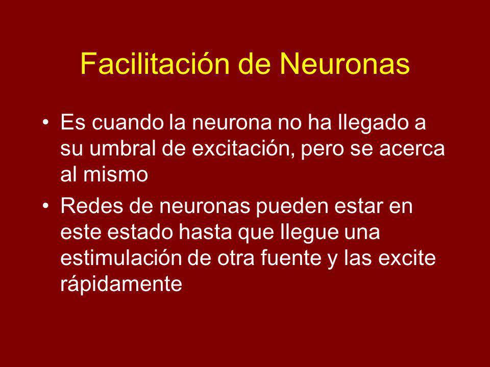 Facilitación de Neuronas