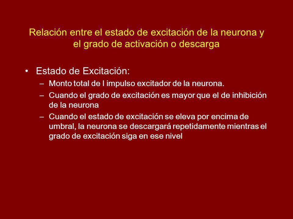 Relación entre el estado de excitación de la neurona y el grado de activación o descarga