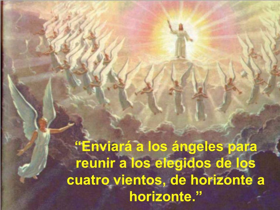 Enviará a los ángeles para reunir a los elegidos de los cuatro vientos, de horizonte a horizonte.