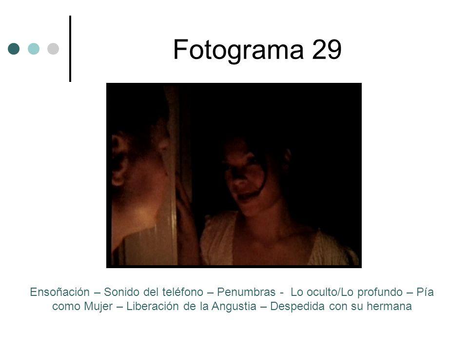 Fotograma 29