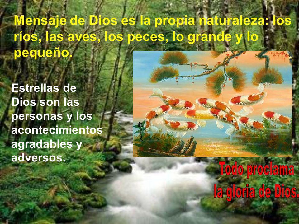 Todo proclama la gloria de Dios.