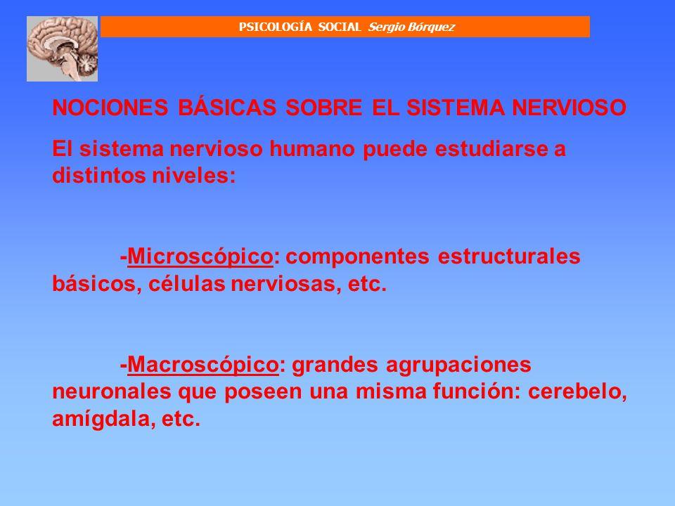 PSICOLOGÍA SOCIAL Sergio Bórquez