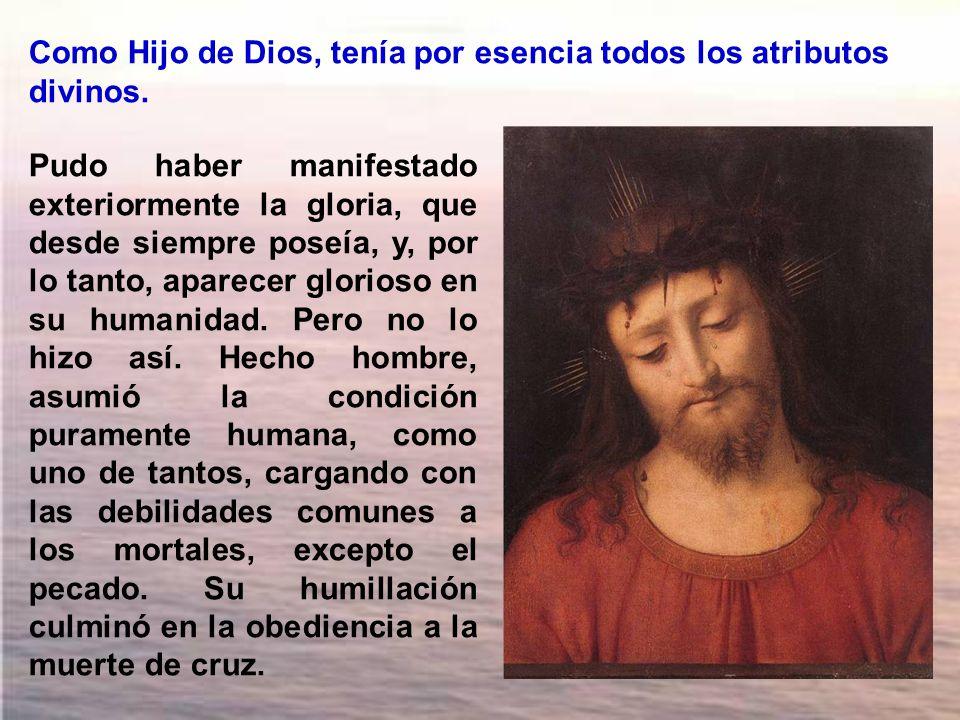 Como Hijo de Dios, tenía por esencia todos los atributos divinos.