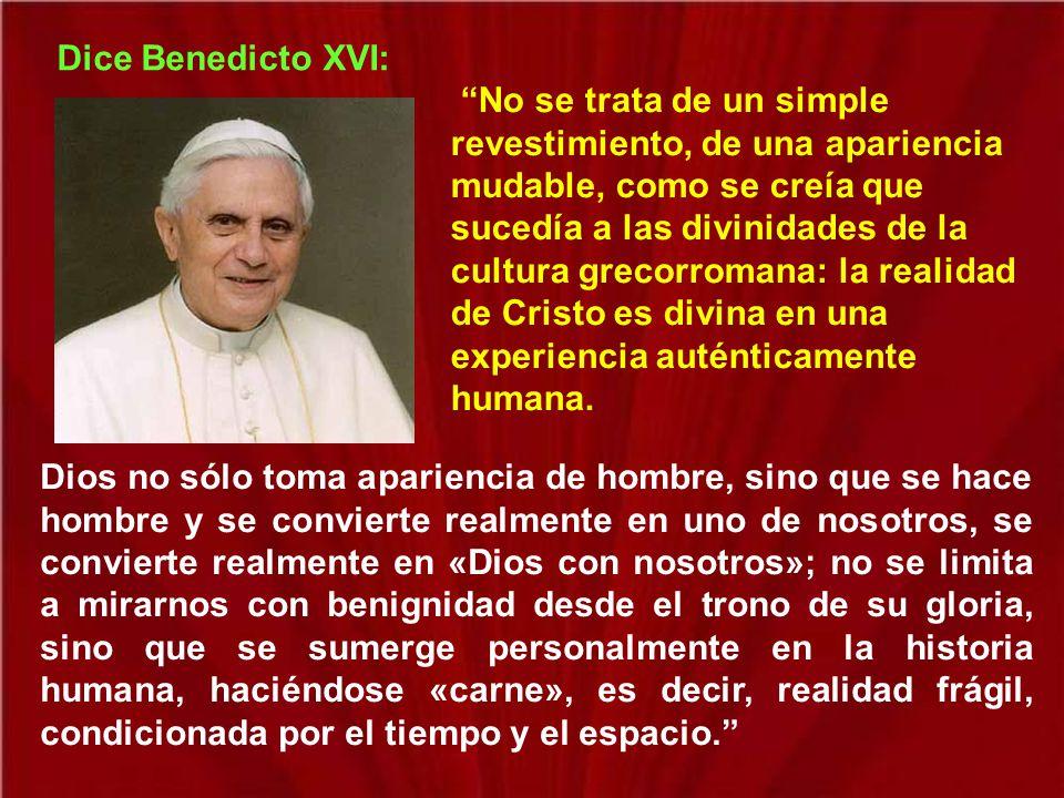 Dice Benedicto XVI: