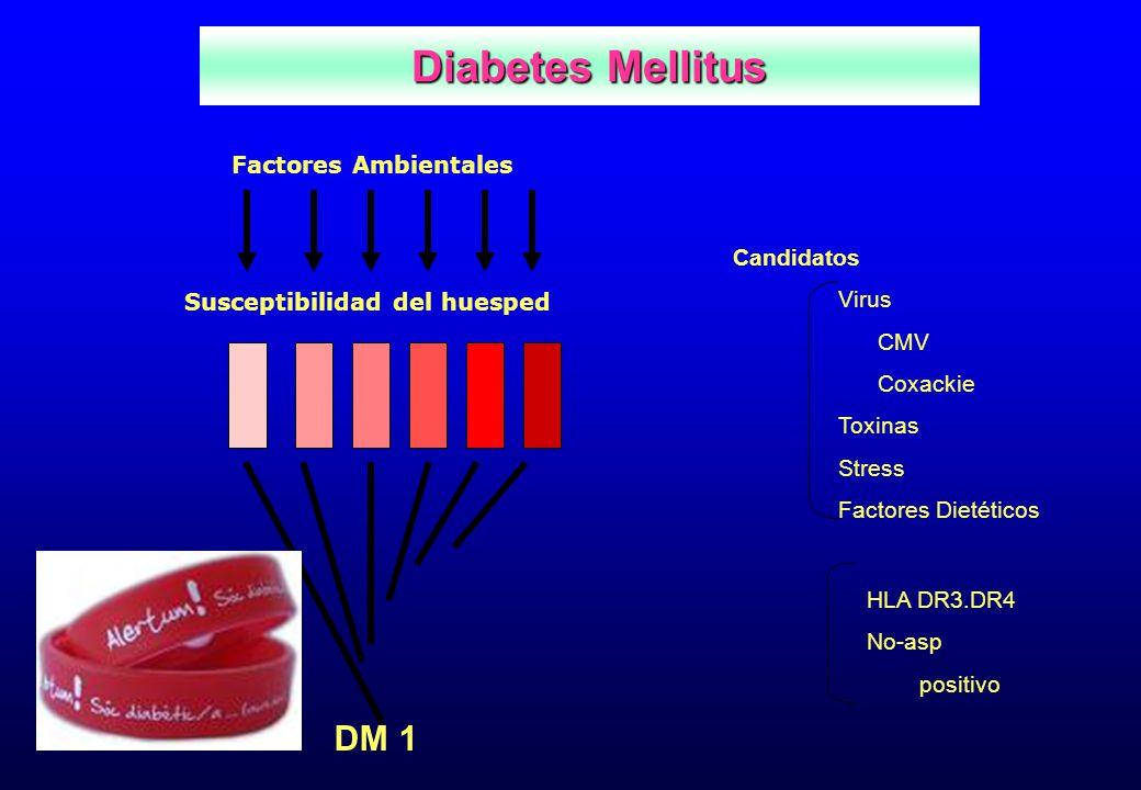 Diabetes Mellitus DM 1 Factores Ambientales Candidatos Virus CMV