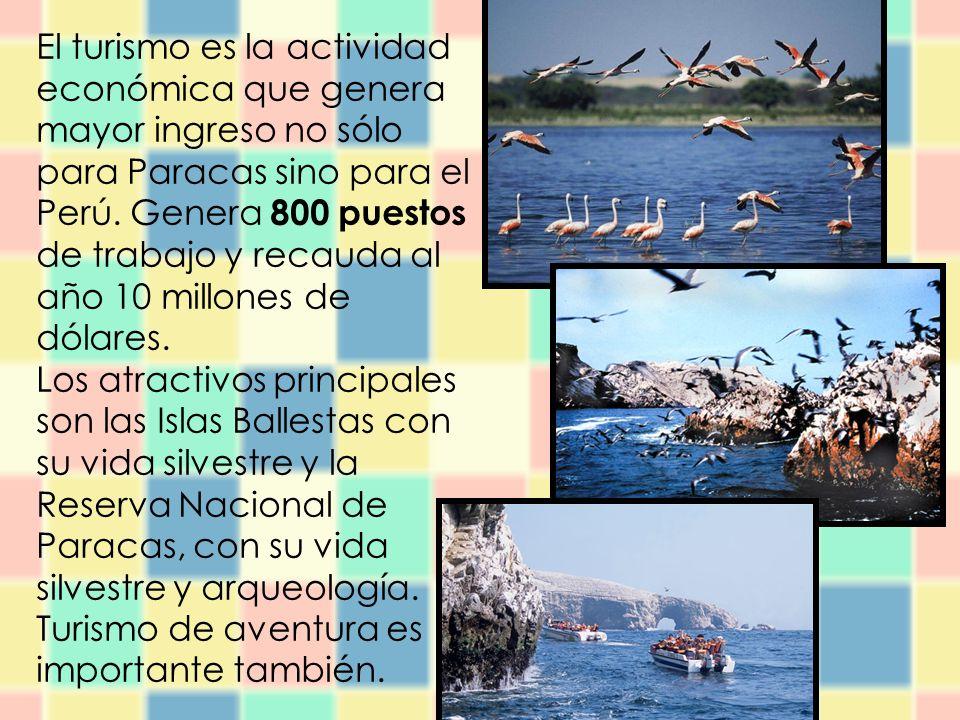 El turismo es la actividad económica que genera mayor ingreso no sólo para Paracas sino para el Perú. Genera 800 puestos de trabajo y recauda al año 10 millones de dólares.